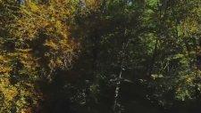 Yedi Göl Yedi Renk - Yedigöller Milli Parkı Tanıtım Filmi