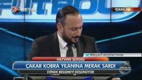 Ahmet Çakar - Hepinize Kobramı Göstericem