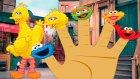 Susam Sokağı Finger Family Şarkısı