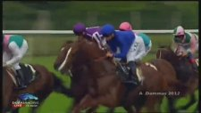 Frankel - Queen Anne Stakes - 140 Handikap Puanlı At