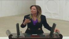 Aylin Nazlıaka'dan Meclise Tarihi Ayar