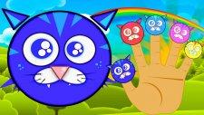 Cat Finger Family Şarkısı