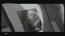 Özcan Deniz - Amanın Aman (1993)