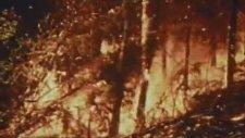 Bandosol - Gaz Toz Bulutu (Metin Lokumcu Hocamıza)