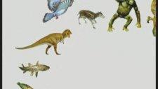Kuran ayetlerinden evrim teorisine delil getirmeye çalışanların yanılgıları -1-