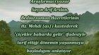 Araştırmacı yazar Sayın Arif Arslan, Bediüzzaman Hazretlerinin Hz. Mehdi (as)'ı kastederek ''çiçekle