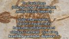 Dr. David Raup'un (Chicago Doğa Tarihi Müzesi, Jeoloji Bölümü Başkanı) Fosillerin Evrim Teorisine De