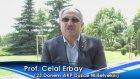 23. Dönem AK Parti Düzce Milletvekili Prof. Celal Erbay A9 Hakkında Ne Dedi? - 1