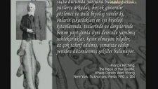 Haeckel'ın sahte çizimleri