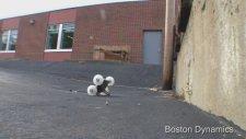 İçine Çekirge Kaçmış Sayko Robot - Boston Dynamics