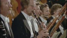 Beethoven - 7. Senfoni 2. Bölüm (Leonard Bernstein)