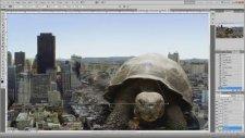 Photoshop'ta Harikalar Yaratmak (Hipnoz Etkisi İçerir)