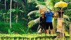 Eşsiz Güzelliklere Sahip Bali'nin 4K Görüntüleri