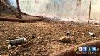 Cizre'de polis dehşet saçıyor
