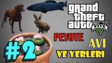 GTA 5 [PC] // Peyote Avı Bölüm 2