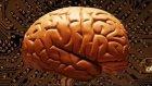 Beyin Hakkında Bilinmeyenler