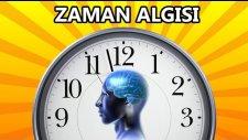 Beynimiz Zamanda Geriye Gidebilir mi ?