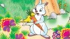 Yalancı Tavşan