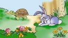 Tavşan İle Kaplumbağa Ezop Masalları