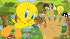 Looney Tunes Finger Family Şarkısı