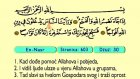 118. En Nasr 1-3 -  Kur'an-i Kerim