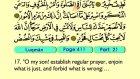 37. Luqman 1-34 - The Holy Qur'an (Arabic)