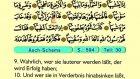 99. Ash Shams - Der Heilege Kur'an (Arabisch)
