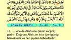 37. Lokman - Arapça Okunuşlu - Mealli Kur'an-ı Kerim Hatim Seti