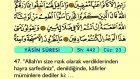 43. Yasin - Türkçe Okunuşlu - Mealli Kur'an-ı Kerim Hatim Seti