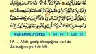 55. Muhammed - Arapça Okunuşlu - Mealli Kur'an-ı Kerim Hatim Seti