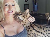 Anne Diyen Vahşi Kedi