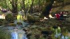 Çanakkale'de Bir Ekolojik Krallık; Kaz Dağları