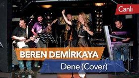 Beren Demirkaya - Dene (Gökhan Türkmen Cover - Canlı)