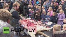 Çocuklara aslanın iç organlarını çıkartıp gösterdiler