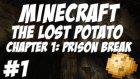 Türkçe Minecraft : Kayıp Patates - Adventure | Sezon 1 | Bölüm 1 | Küçük Tatlı Domuzcuk!
