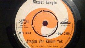 Ahmet Sezgin - ATEŞİM VAR KÜLÜM YOK