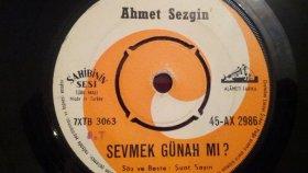 Ahmet Sezgin - SEVMEK GÜNAHMI