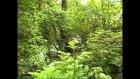 Kazani (Kajan) - Dolenci - Lera - Pelister