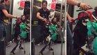 Rockçı Kukladan Metroda Enfes Gösteri