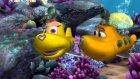 Okyanus Kaşifi Olly Kaplumbağa Minky