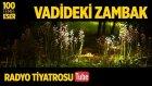Radyo Tiyatrosu ~ Vadideki Zambak (100 Temel Eser Sesli Kitap)