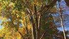Autumn Adventure - EP.1