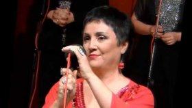 Fatma Aslanoğlu - Bir Bahar Dalısın Rûhumda Açan
