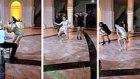 Profesyonel Dansçı Kadından Eşine 'Baştan Çıkarıcı Düğün Dansı