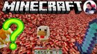 Nether'da Bir Tavuk | Minecraft Türkçe Survival Multiplayer | Bölüm 65