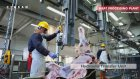 GUNESER INTEGRATED MEAT PLANTS
