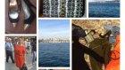 Istanbul Alıs-Verısı, Terkos, Atlas Pasajı, Mango Outlet