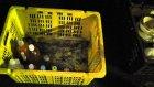 Japonya`da Geri Dönüşüm Çöpleri