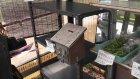 Japonya'da Satıcısız Manav Tezgahı