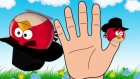 Finger Family Songs | Angry Birds  Finger Family Song & English Children's Songs